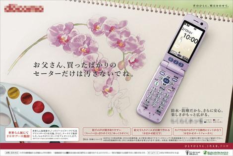 Phalaenopsis_newspaper_advertisem_4