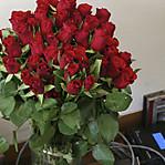 Crimson_roses_2